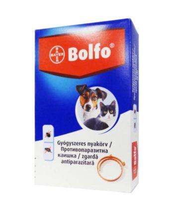 Bolfo kullancs- és bolhanyakörv kistestű kutyáknak és cicáknak 38cm